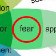 Emotions-Fear