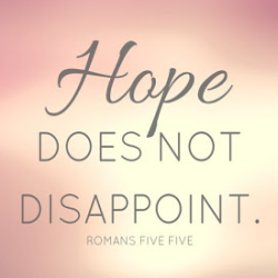 Hope Does not Disappoint