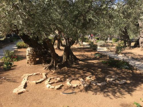 Garden of Gesthemane
